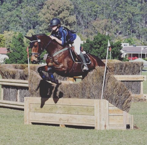 Image result for Lady Congress simpson eventing